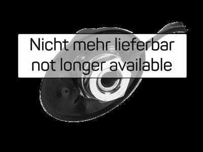 Dachantenne AM/FM 76° Stabneigung 12V extern